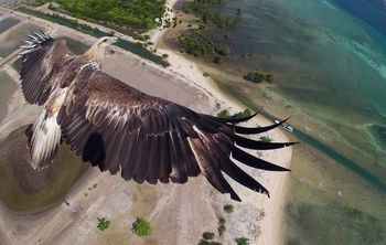 drone-photography-contest-01_81740_600x450_600x450.jpg